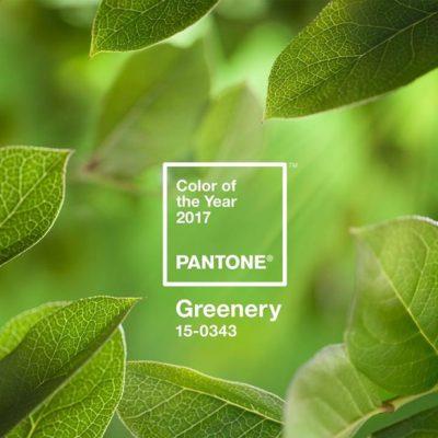 GREENERY: El color del 2017 (Filosofía y productos)